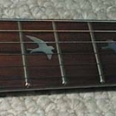 Inlayed guitar fretboard